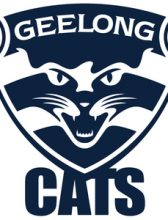 AFL Cuff Links Geelong Cats